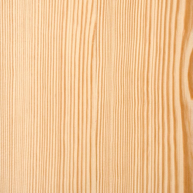 Southern Yellow Pine Timber Merchants Uk Timbersource: pine tree timber