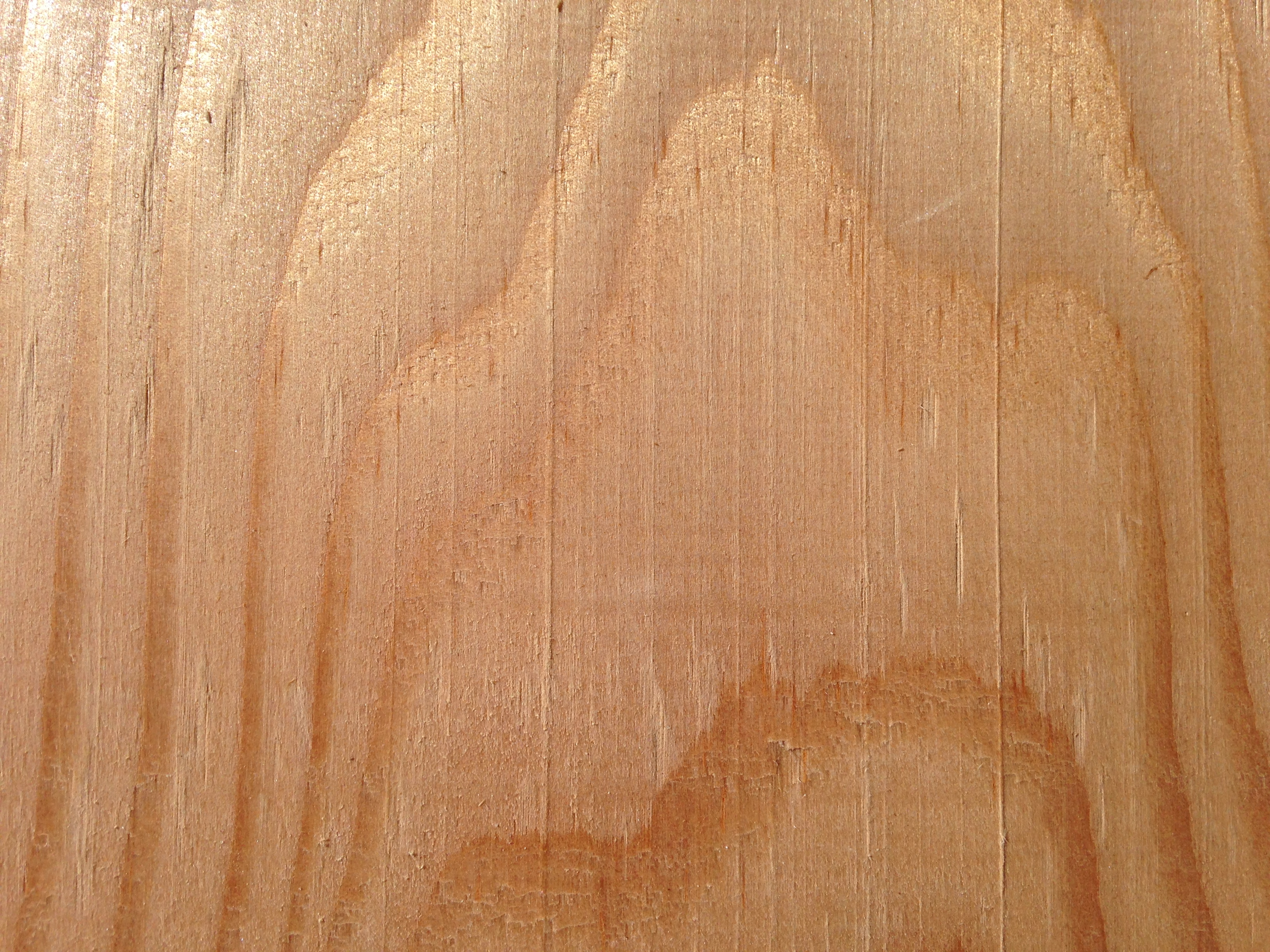 American Douglas Fir Timber Merchants Uk Timbersource